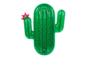 flotador-cactus