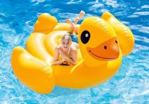 flotador pato comprar