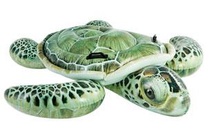 flotador-tortuga