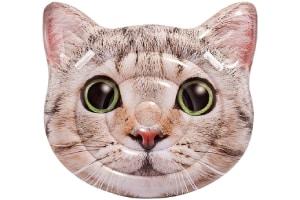 flotador gato